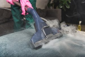 Advantages of Dry Carpet Cleaning